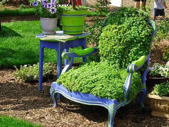Fotoliu cu plante