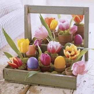 In ghivece mici asezati oua colorate si lalele