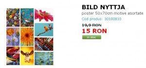 BILD NYTTJA poster 50x70cm motive asortate